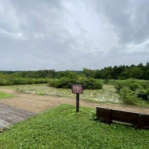 妙高高原「いもり池」「笹ヶ峰」(新潟県妙高市)