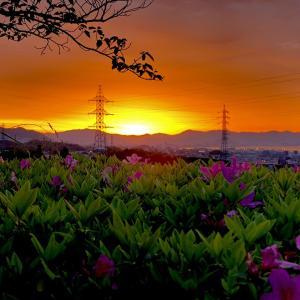 広島湾を望む暁光に魅せられて(広島県廿日市市)