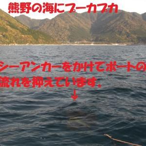 マダイだけを狙ってⅡ 熊野でミニボート釣り 2020.4.11