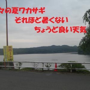 入鹿池夏ワカサギ  2020.6.24