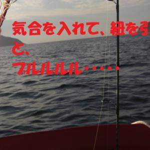 ボート釣りの初心者マークが外れない 熊野ミニボート釣り 2020.9.21
