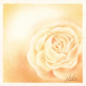 セピア色の薔薇