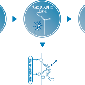 塗料の広告・・・蚊の多いこの季節に、防蚊塗料「アンチモスキート」などいかがでしょうか。