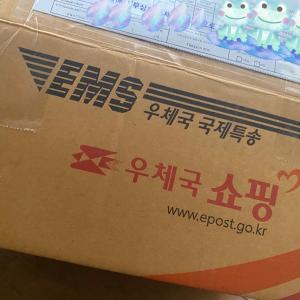韓国スタバのタンブラー