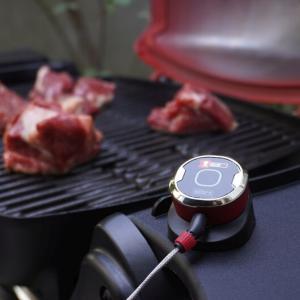 【レビュー】Weber「iGrill Mini」は肉の中心温度がグラフで完璧に見えるガジェット