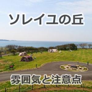 三浦半島ソレイユの丘 キャンプ場のレビューブログ | 雰囲気と注意点&便利情報