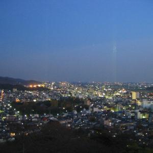 桐生市街の夜景。