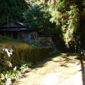 日本一寂しい旅を追求する?(後編) 奈良の廃村、中津川に降り立って