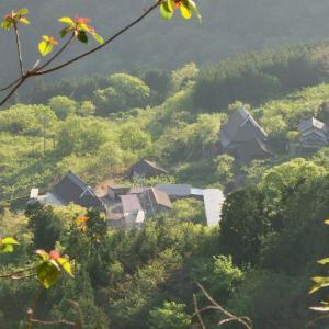 大阪の廃村を目指して(後編) 干し柿集落から、ワイルド林道に迷い込む