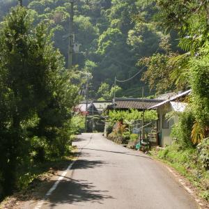 大阪の廃村を目指して(前編) 和泉山脈の林道で足を取られまくる
