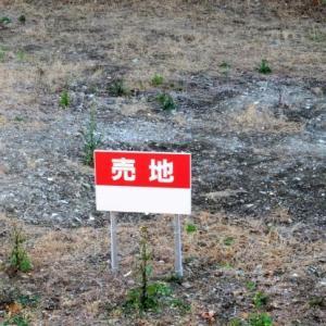 広い土地をどう有効活用するか。道路付によっては厳しいケースも。