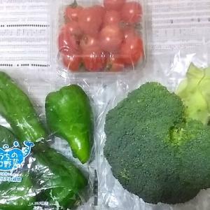 野菜も高いし肉も高いし。