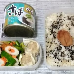 2019年6月17~21日の(ほぼ)まるごと冷凍弁当。