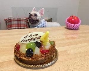 ピーター君のお誕生日パーティー♪