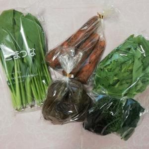 【あるまま農園】野菜が届く楽しみ!