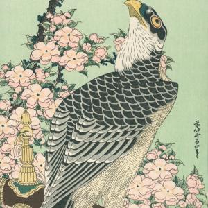 オススメ浮世絵:桜花に鷹(葛飾北斎)