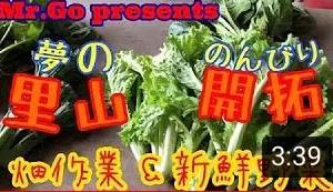 YouTube動画配信「Mr.Goさんの里山開拓シリーズ」vol.11~14