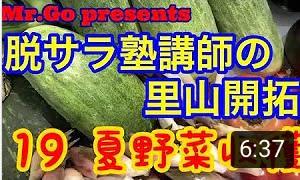 YouTube動画配信「Mr.Goさんの里山開拓シリーズ」vol.19~21