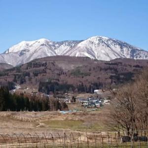 農園の畑より早春の飯綱山を望む。