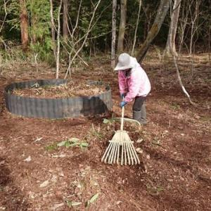 腐葉土堆肥作り