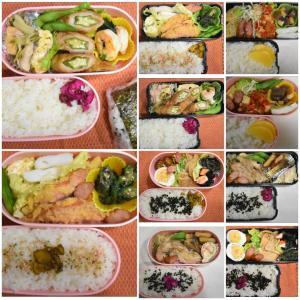 日々のお弁当レシピ