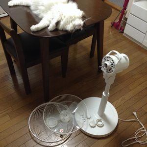 扇風機を丸洗いした。