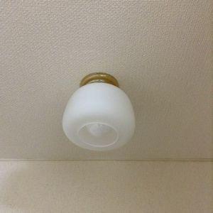 トイレ、玄関等の電気のかさ掃除。