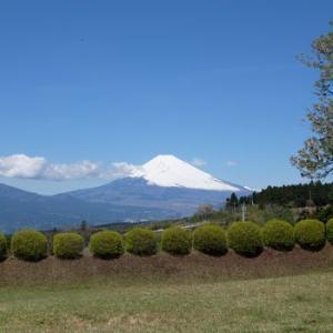 富士山はいつでも富士山。