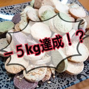 【500週連続1位!】-5kg達成!あの〇〇が半年に一度の増量中!頑張らないダイエット