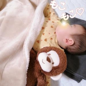 【イラッ!】新学期早々、長男から指摘されたこと/【三度寝】注意!愛用中のふわとろ毛布