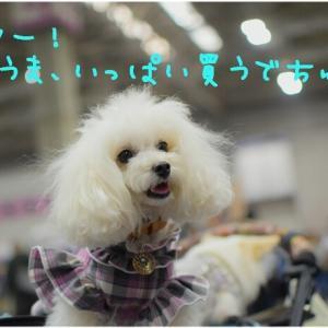 ちょっとだけって言いながらの戦利品 @ペット博in大阪
