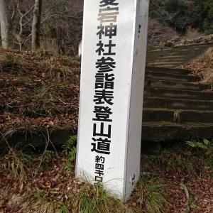 京都の愛宕山登山。違う意味で楽しかった。