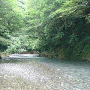 テンカラ渓流釣りと婚活記~中編~