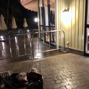 ムーミンバレーパーク冬の夜 2