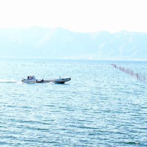 琵琶湖(近江八幡市)