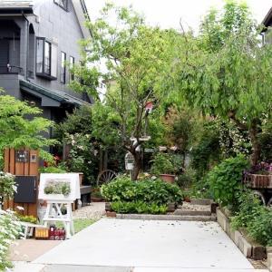近江八幡市のW邸の花庭(3)