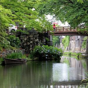 梅雨入の八幡堀(近江八幡市)