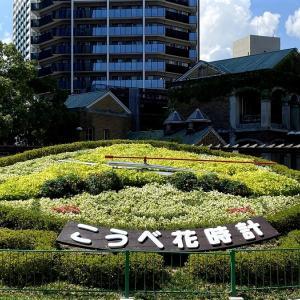 三宮の「フラワーロード」と「そらガーデン」(神戸市)