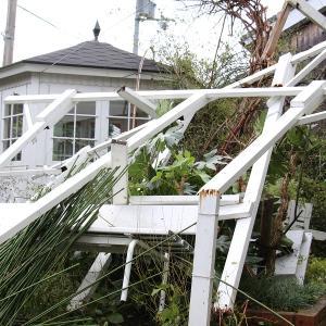 台風のガーデン被害は、もう御免