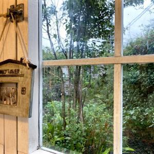 「窓の外は雨、雨が降っている ♪」