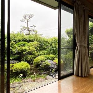 早い梅雨入り、緑の和庭