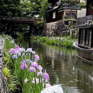 「雨と菖蒲」が似合う風景(近江八幡市)