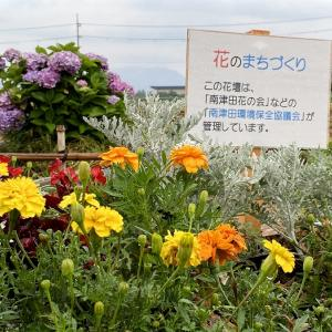 花の団体で・・・