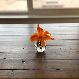 食卓のユリの花とカレーライス