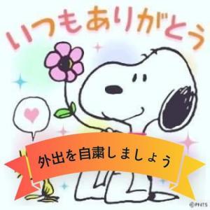 """""""星組公演ポスター♥"""""""