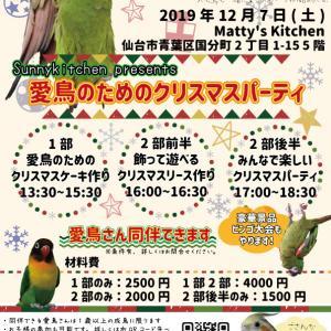 愛鳥ための料理教室~クリスマスパーティ~