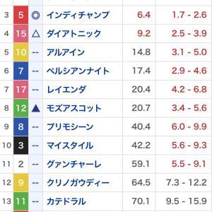 適当競馬No.28 マイルCS&京都2歳ステークス