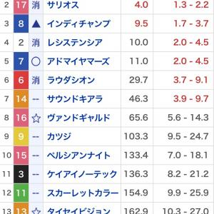 適当競馬11月3週 マイルチャンピオンシップ・東京スポーツ杯2歳ステークス