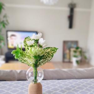 【bloomeeブルーミー】ポストに届く小さな花束