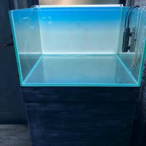 60センチ特注水槽新レイアウト〜水槽の角度